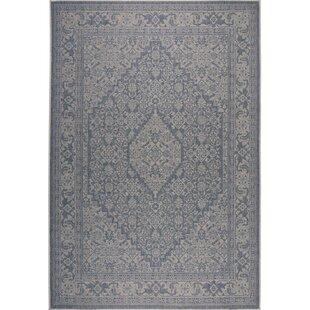 Persian Blue Beige Indoor Outdoor Area Rug