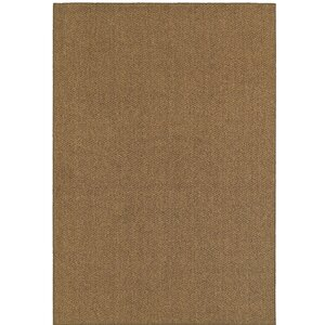 Buy Carrow Brown Outdoor Area Rug!