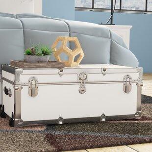 The Modern 30  Trunk & Decorative Trunks Youu0027ll Love | Wayfair