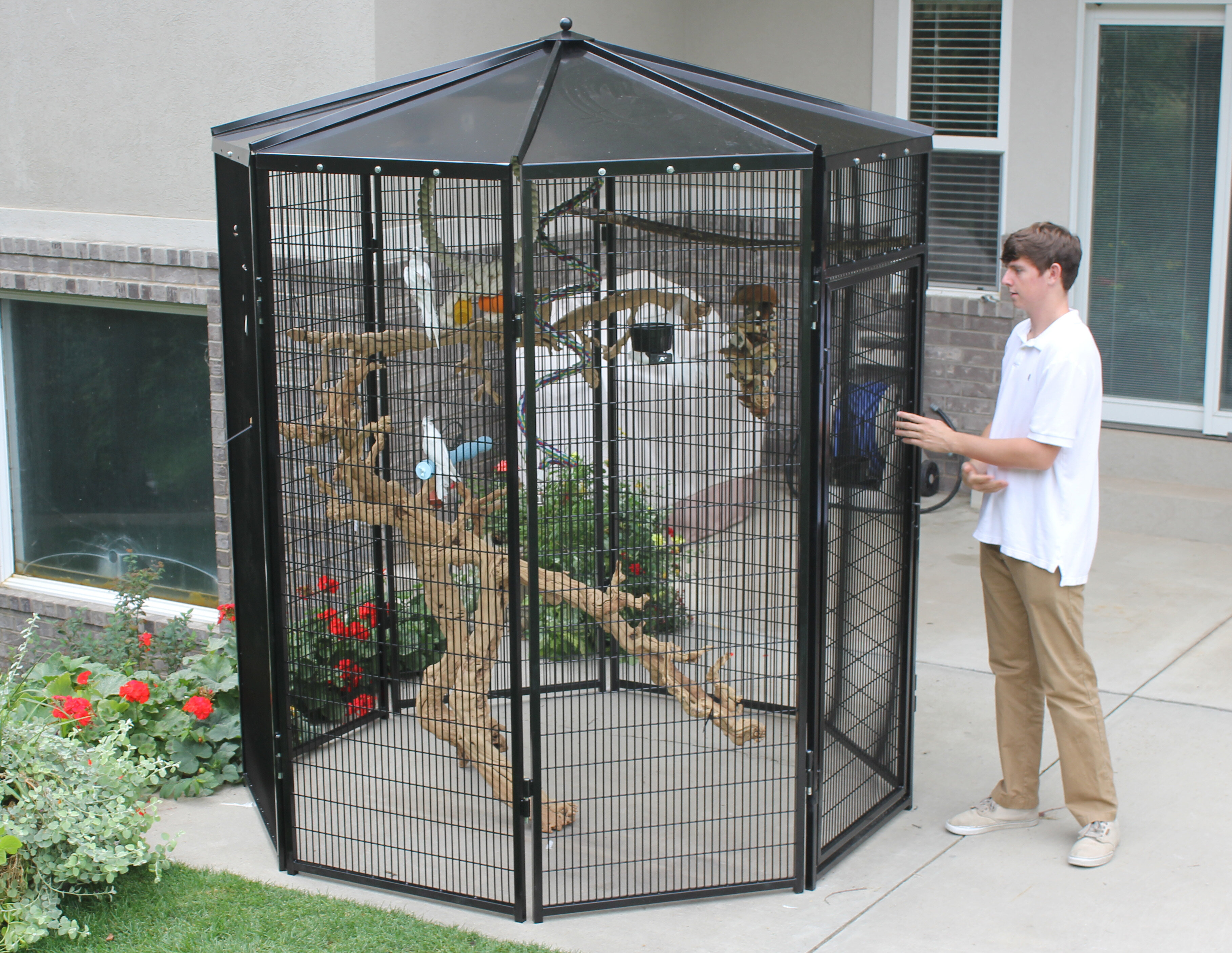 K9 Kennel 8 Sided Bird Aviary | Wayfair