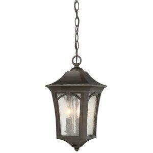 Coyan 3-Light Outdoor Hanging Lantern