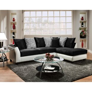 Dilorenzo 2 Piece Sectional