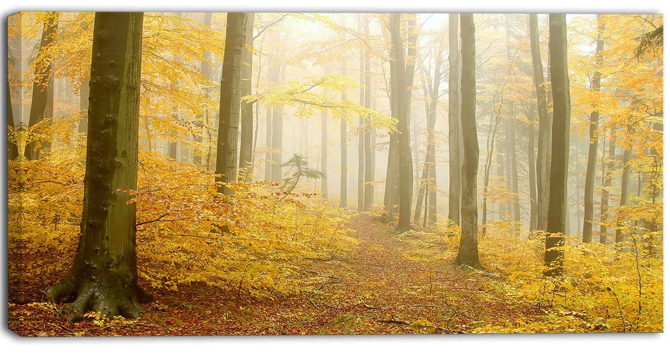 DesignArt \'Autumn Beach Forest\' Wall Art on Wrapped Canvas in Yellow ...