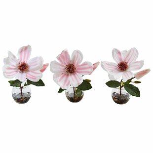 Silk magnolia arrangements wayfair silk magnolia floral arrangement in decorative vases set of 3 mightylinksfo