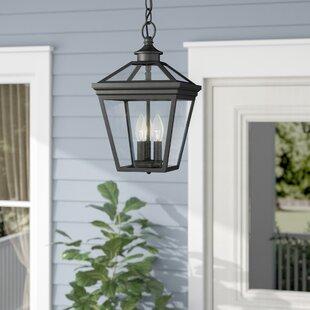 Outdoor hanging lights youll love wayfair coleg 3 light outdoor hanging lantern aloadofball Choice Image