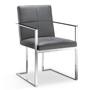 Phoenix Arm Chair by Orren Ellis