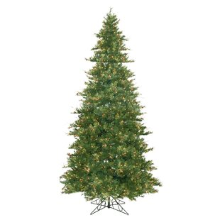 country pine 12 green slim pine artificial christmas tree with 1900 pre lit clear lights with stand - Pre Lit Slim Christmas Tree