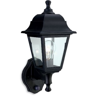 Dawn to dusk outdoor lighting wayfair moncayo 1 light outdoor sconce aloadofball Images