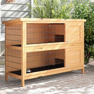 Guinea Pig Cages & Hutches You'll Love in 2019 | Wayfair