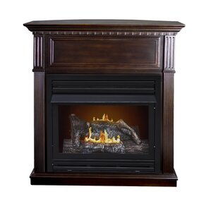 Intermediate Vent-Free Dual Fuel Gas Fireplace by Pleasant Hearth