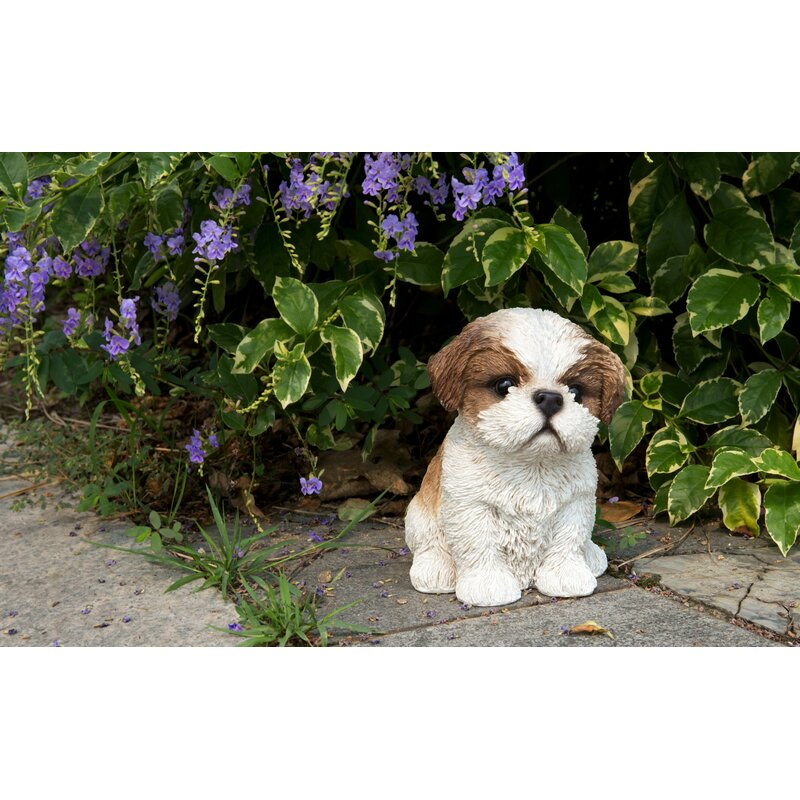 Hi Line Gift Ltd Sitting Shih Tzu Puppy Statue Reviews Wayfair