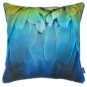 Feathers Scatter Cushion