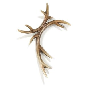 Molded Apprearace Of Deer Antlers Wall Decor