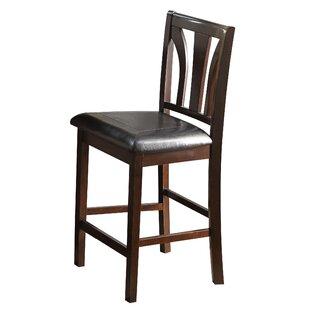 Elburn Dining Chair (Set of 2)