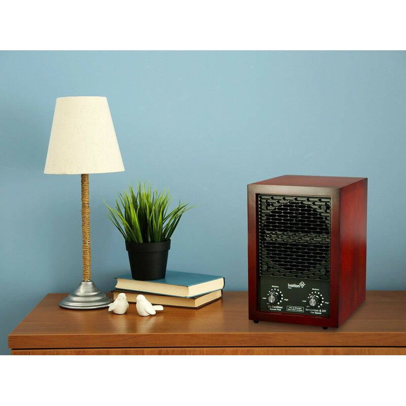 Air Purifier and Ozone Generator with HEPA Filter