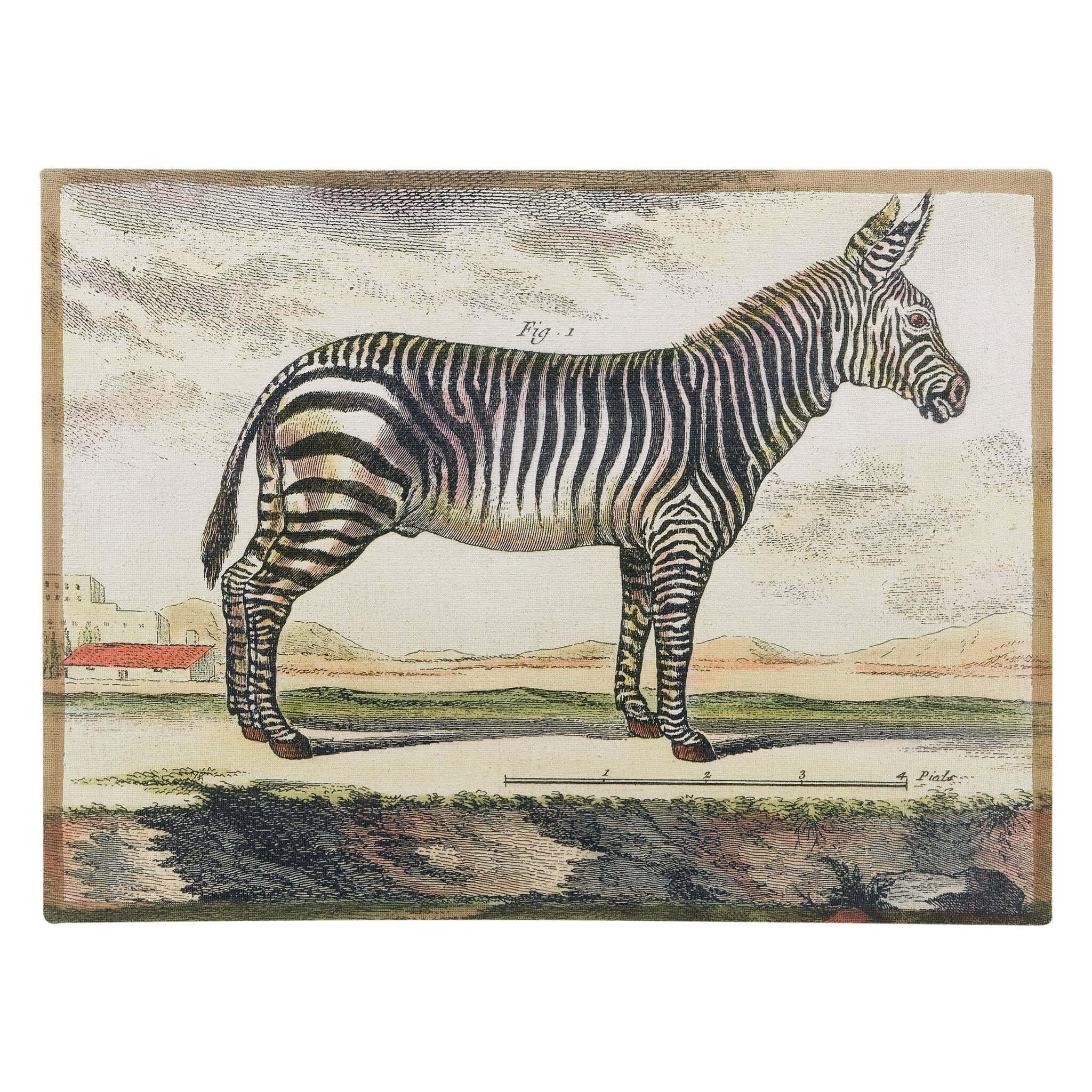 World Menagerie Diderot Zebra Framed Graphic Art Print & Reviews