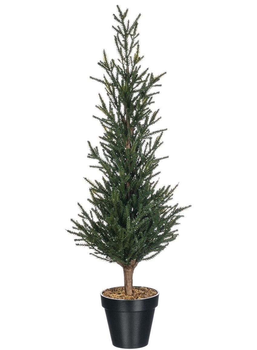 The Holiday Aisle Potted Mini Pine Tree Wayfair