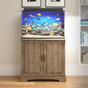 Merveilleux Aquarium Stand Aquariums Youu0027ll Love | Wayfair