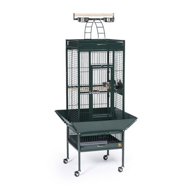 prevue hendryx park plaza large bird cage with casters reviews