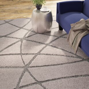 modern thick pile area rugs allmodern