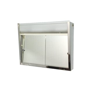 Carrie 24 X 19 38 Surface Mount Medicine Cabinet With Lighting