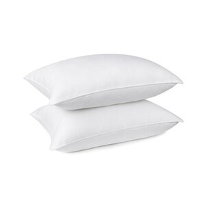 Luxurelle Premium Gel Fiber Pillow (Set of 2) by Alwyn Home