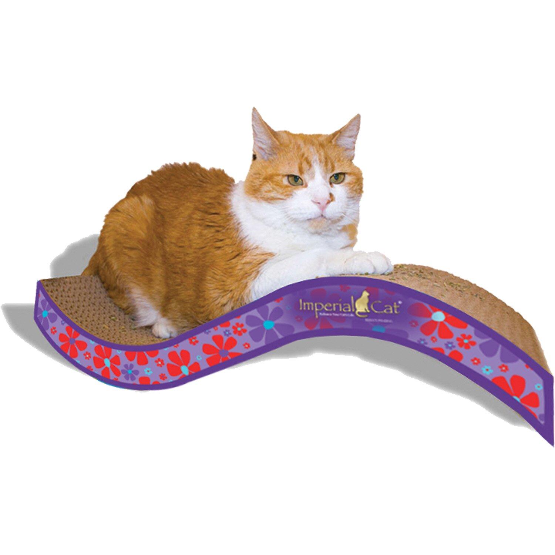 Imperial Cat Scratch N Shapes Medium Purrfect Stretch