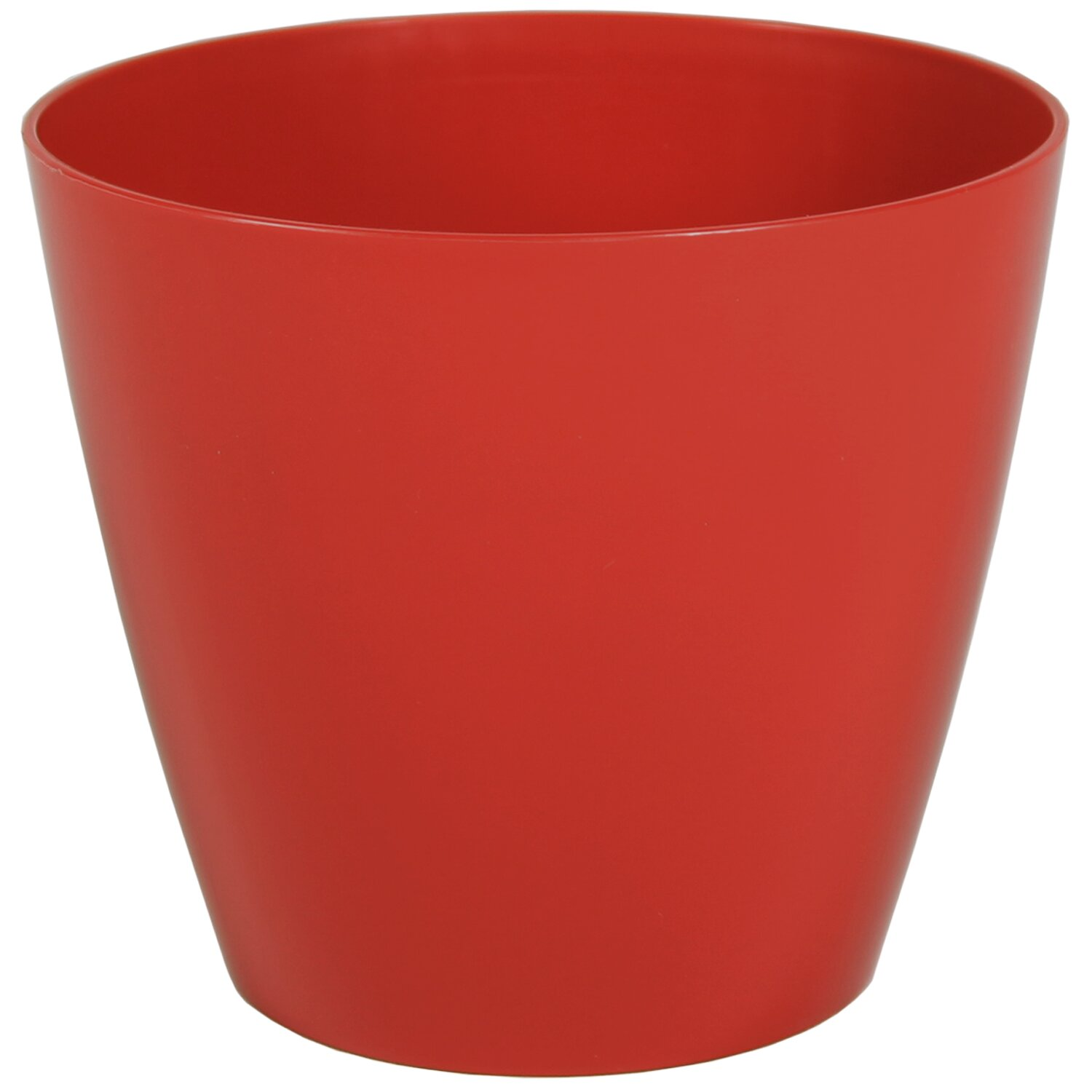 Wayfair Basics Wayfair Basics Plastic Pot Planter