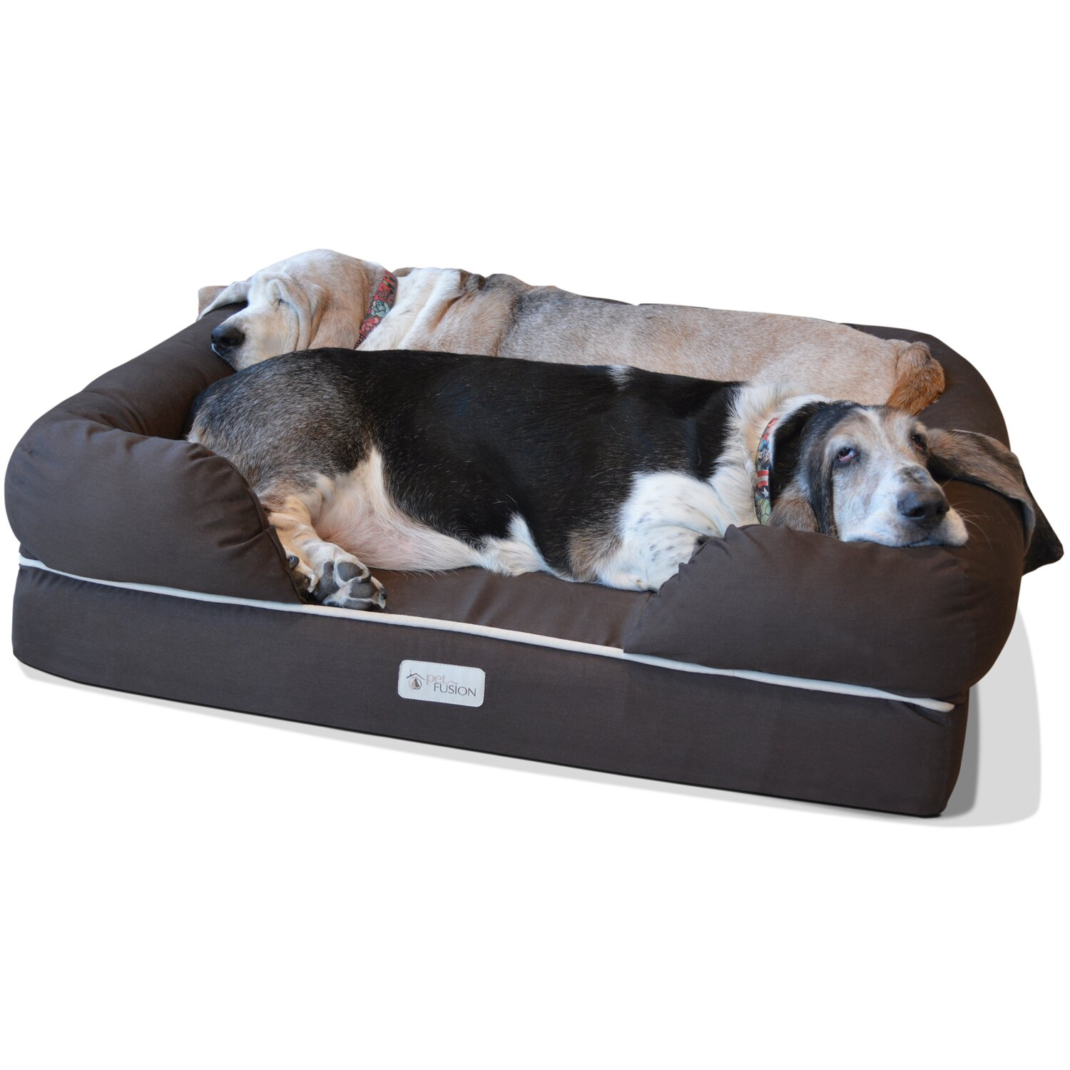 petfusion ultimate bolster dog bed and lounge with solid memory foam reviews wayfair. Black Bedroom Furniture Sets. Home Design Ideas