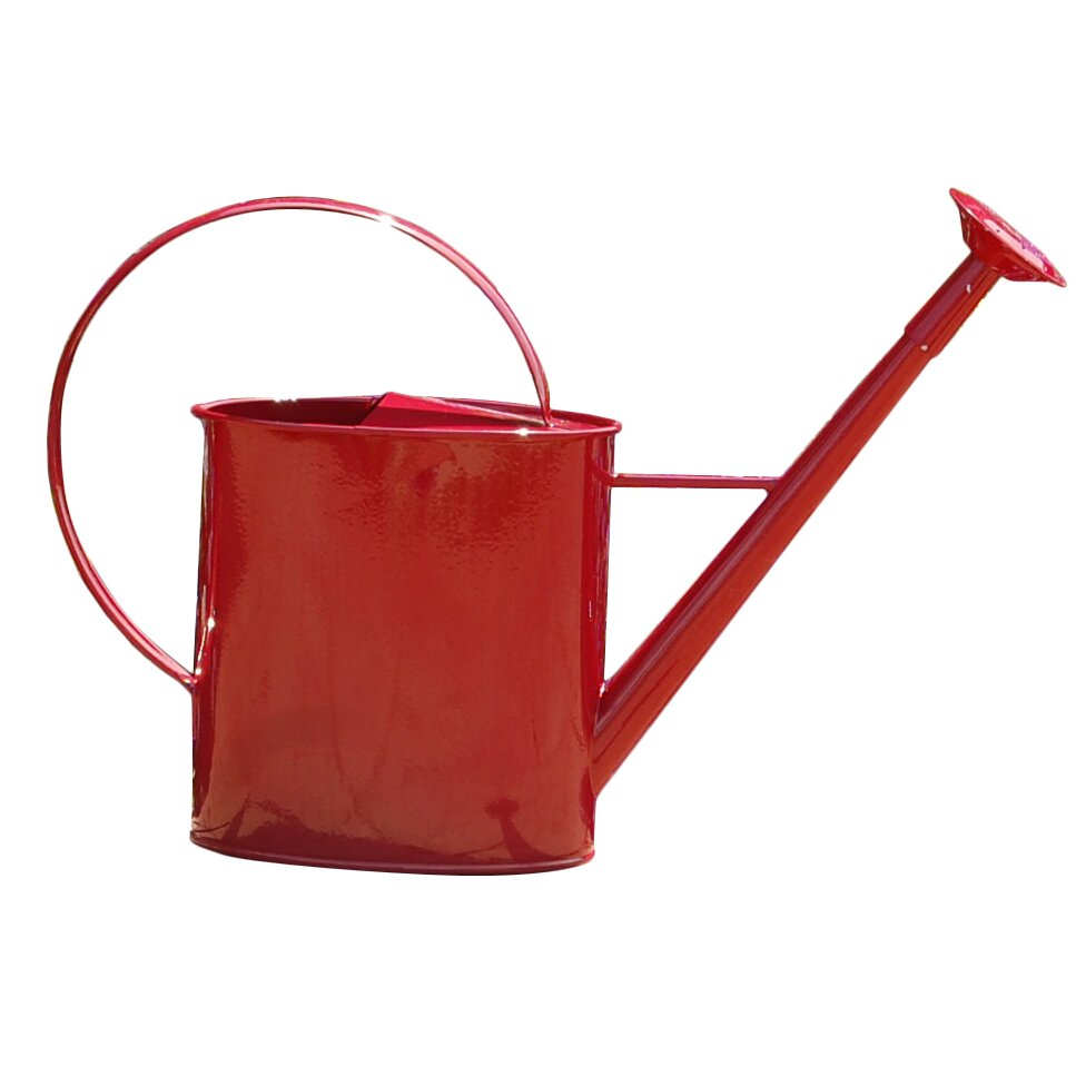 Griffith creek designs metal 1 gallon watering can with long spout reviews wayfair - Gallon metal watering can ...