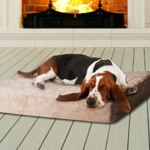 Paw Memory Foam Dog Bed Reviews