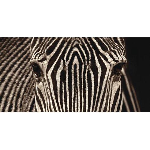 Zebra Grevy by Marina Cano Photographic Print on Canvas
