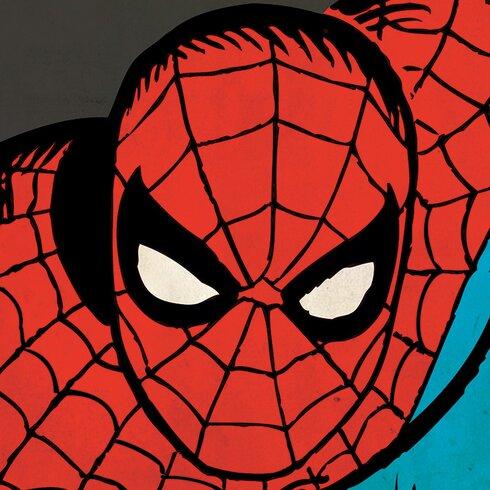 Marvel Comics Spider-Man Close-Up Canvas Wall Art