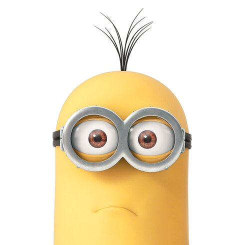 Despicable Me Kevin Close Up Canvas Wall Art