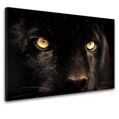 Panther Photographic Print on Canvas