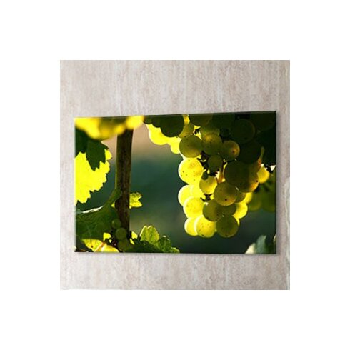 Grapes Photographic Print on Canvas