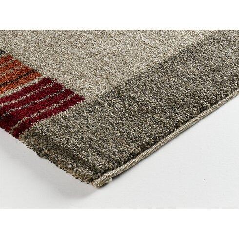 Beige/Dark Brown Area Rug