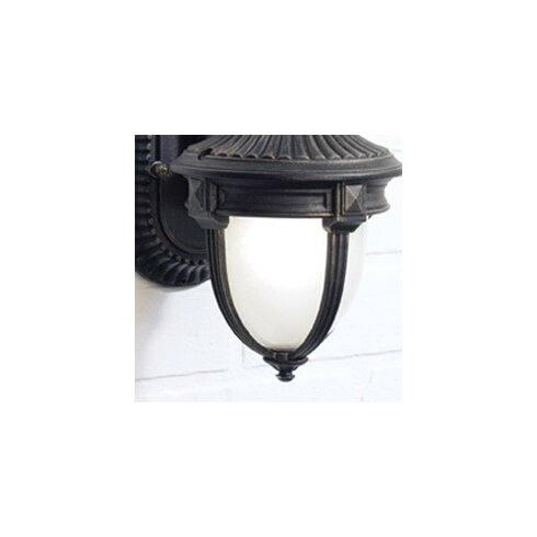 46cm Glass Novelty Wall Sconce Shade