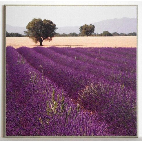Lavender View 2 Painting Print