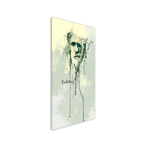 Charles Darwin Enigma Framed Graphic Print on Canvas