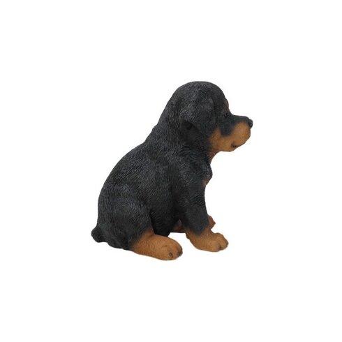 hi line gift ltd sitting rottweiler puppy statue. Black Bedroom Furniture Sets. Home Design Ideas
