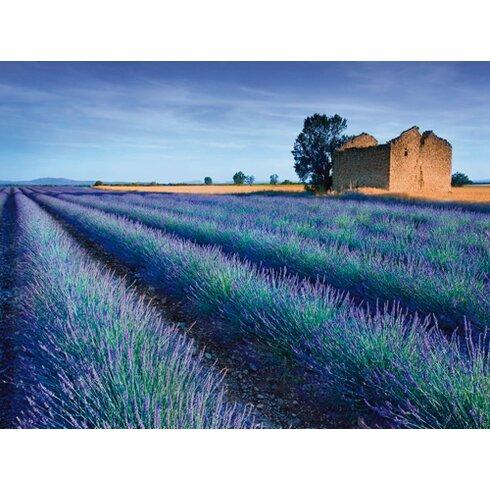 "Fotodruck ""Stone Barn in Lavender Field""von Simon Kayne"