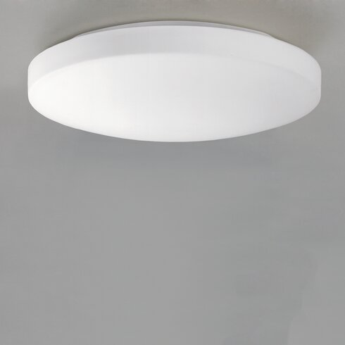 Moon 1 Light Flush Ceiling Light