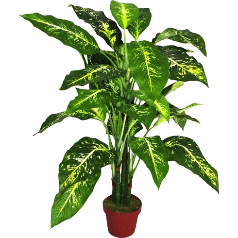 Artificial Aglaonema Costatum Plant