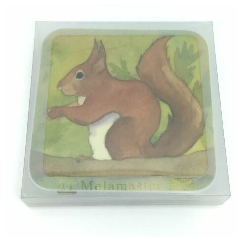 Squirrel Coaster