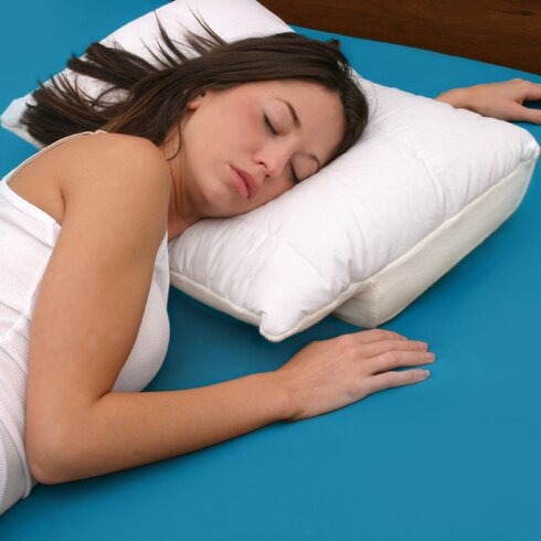 Deluxe Comfort Sleep Better Memory Foam PillowReviewsWayfair