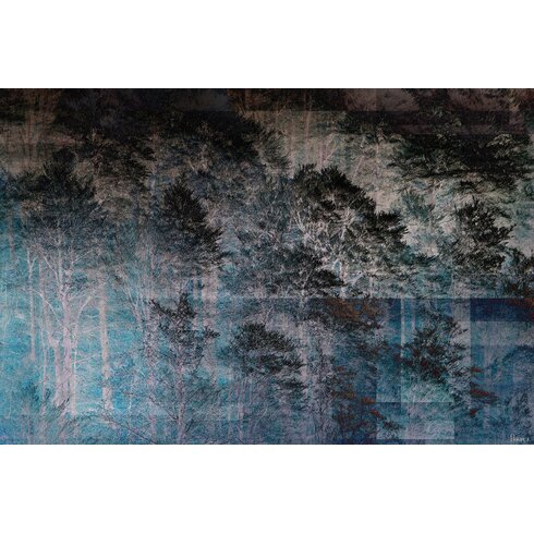 Night Forest Graphic Art on Canvas