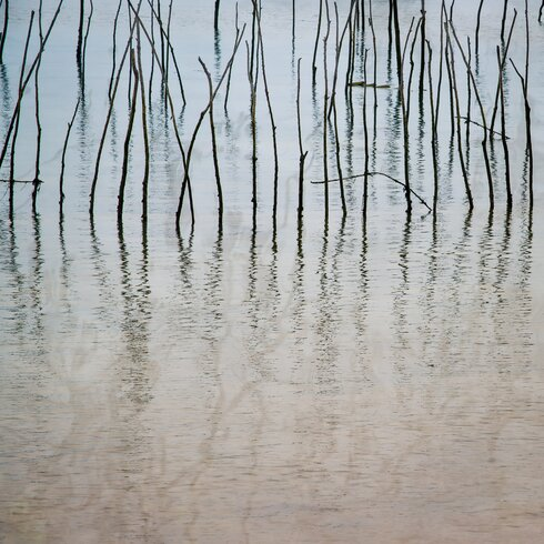 'Stakes Arcachon 1' by Laurence David Framed Photographic Print