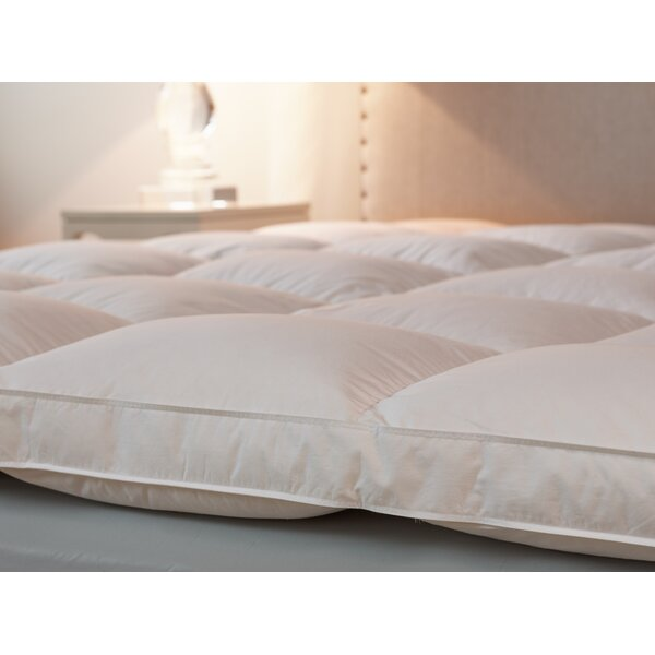 down inc featherbed filled with 50 down and 50 feather u0026 reviews wayfair