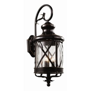 Cottage country outdoor wall lighting youll love wayfair haskins outdoor wall lantern aloadofball Gallery